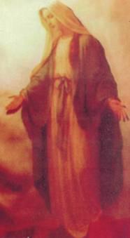 imagen dama blanca